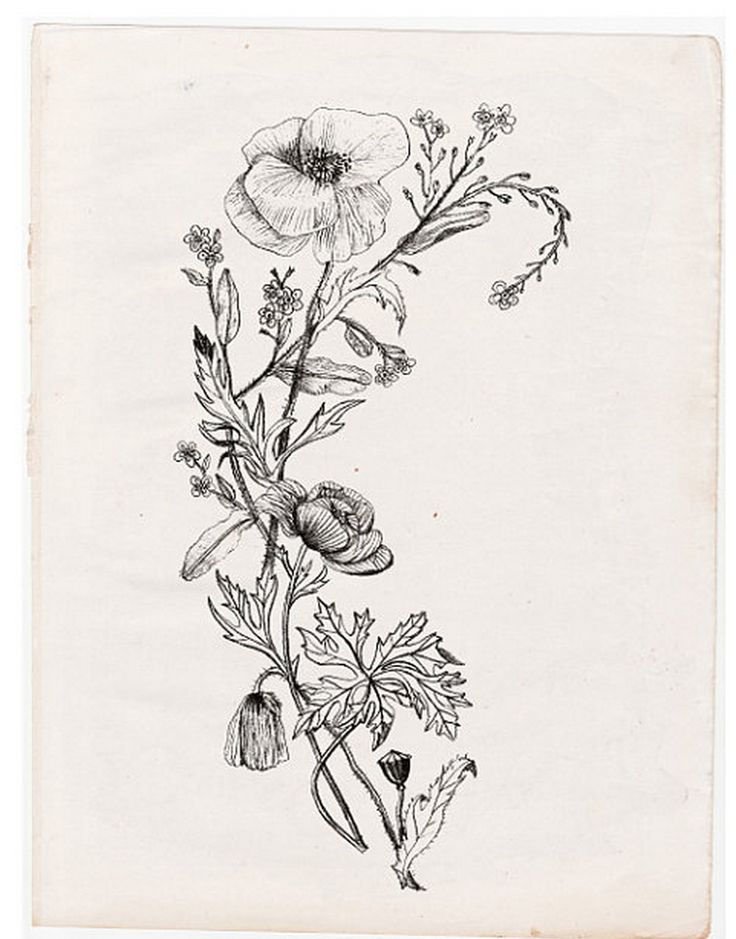 20 Botanical Tattoo Artists You Need To Follow For Your: Botanical Tattoo (With Images)