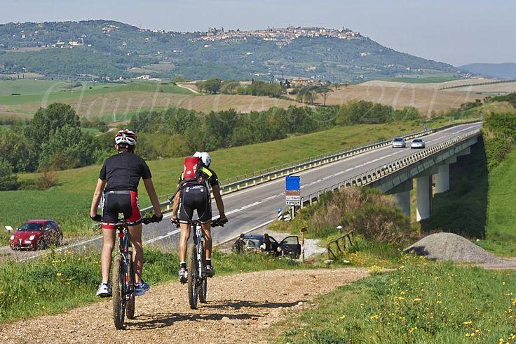 Campagna Senese nella zona di Montalcino.