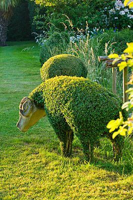 I just love this type of topiary.