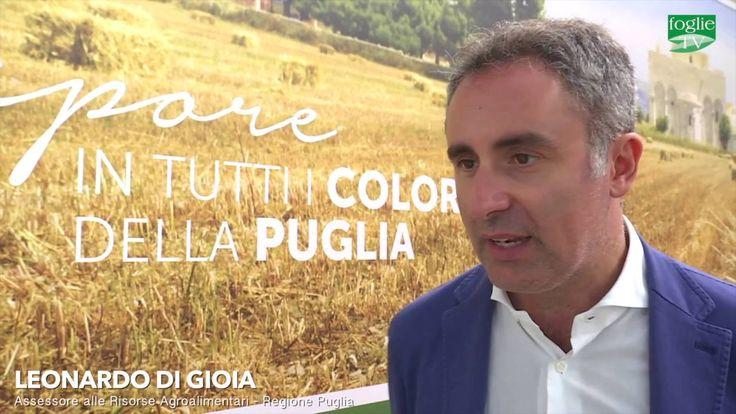 FOGLIE TV – Speciale FdL 2016 - Ad Agrimed incontro su l'agro-biodiversità