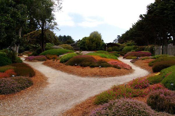 17 Best Eather Garden Images On Pinterest Heather O 39 Rourke Landscape Architecture Design And