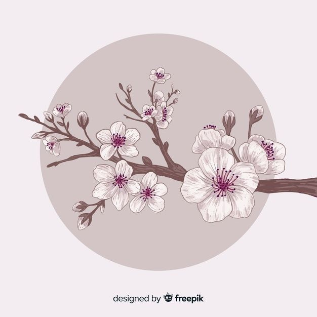 Fondo De Ramas Y Flores De Cerezo Dibuja Free Vector Freepik Freevector Fondo Flor Floral Flor De Cerezo Arbol De Cerezo Dibujo Flor De Cerezo Dibujo