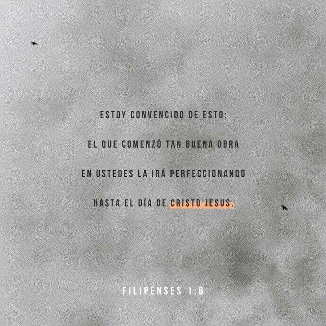 Sólo con nuestra mirada puesta en Jesús nos encaminamos para ir en busca de la estatura del varón perfecto
