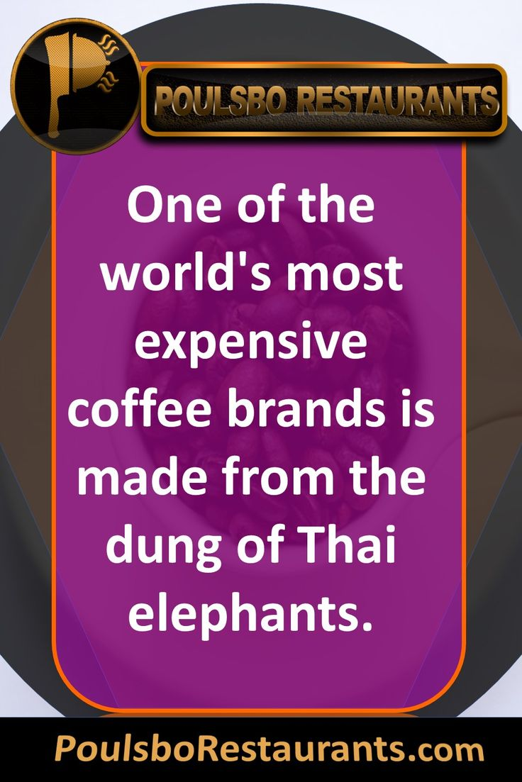 One of the world's most expensive coffee brands is made from the dung of Thai elephants. Food fact presented by PoulsboRestaurants.com