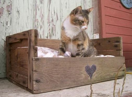 <3   ---   Pet Bed Made From Pallets   ---   #pallets