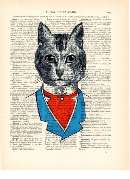 Boekpagina+image+geklede+kat+van+Dictionary+op+DaWanda.com