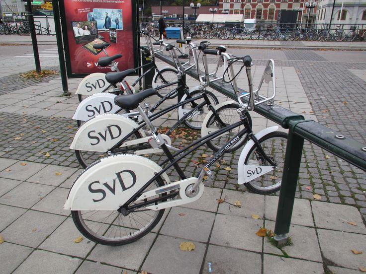 SvD (Stockholm, Sweden)