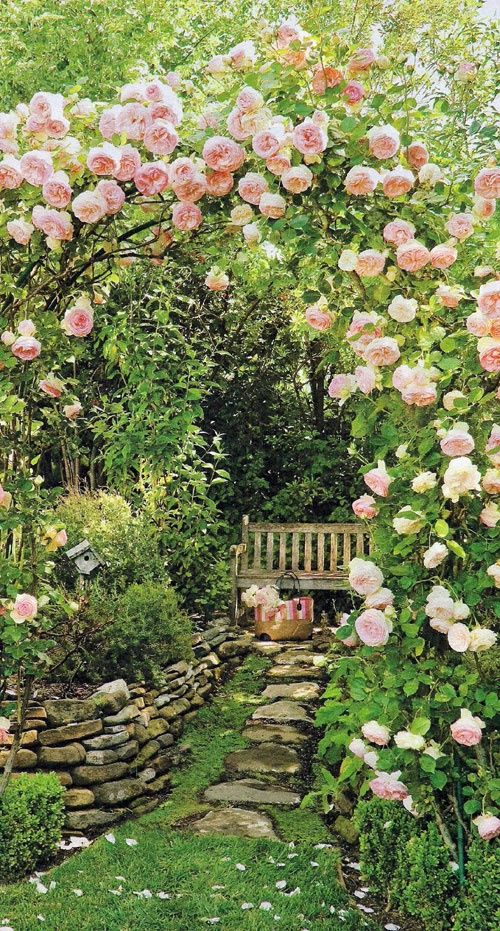 """Archway of roses or are they peonies?""  ~The blooms do look very large for Roses. If the are Peonies, I can only imagine the scent that surrounds you while sitting on the little Bench!~ <3"