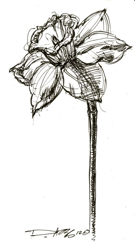 derek hess- flower. This will be my next tattoo.