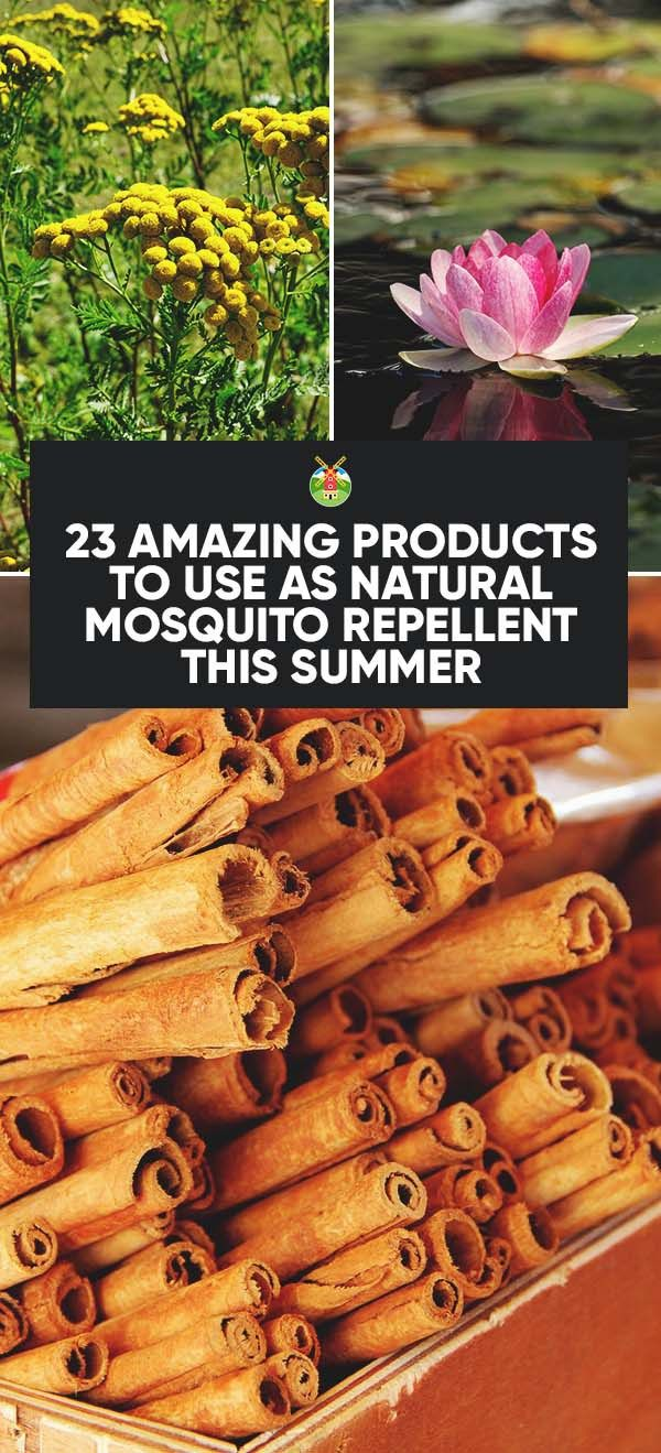 Try these 23 remedies as a natural mosquito repellent this summer. Each works a little differently for every person, but you will find the best one for you.