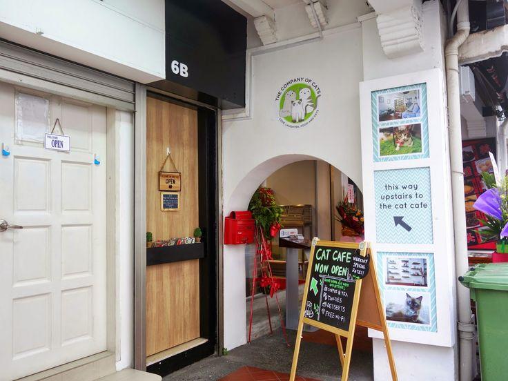 Chinatown Cat Cafe Ny