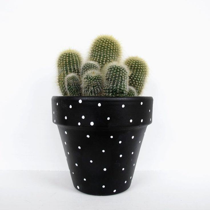 A hand painted spotty plant pot. Sealed for both water and UV protection. Measures 11cm high, 11cm diameter.