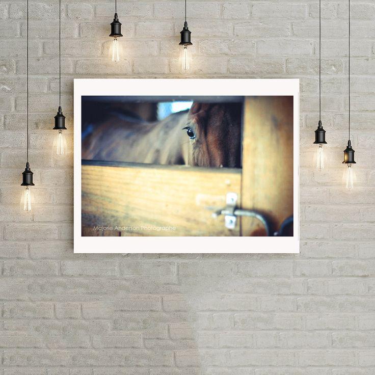 Photographie numérique couleur téléchargemet, cheval brun dans un box d'écurie, vintage, vieillot, décoration murale, majorie de la boutique MajoriePhotography sur Etsy