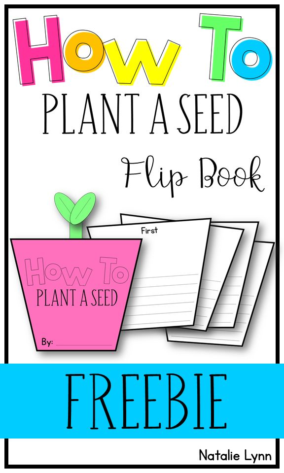 How to plant a seed writing flip book freebie | how to writing | plant unit
