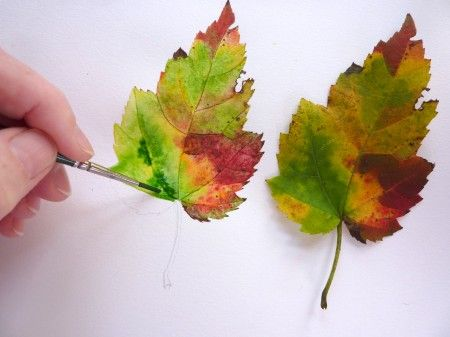 Tutorial on painting fall leaves