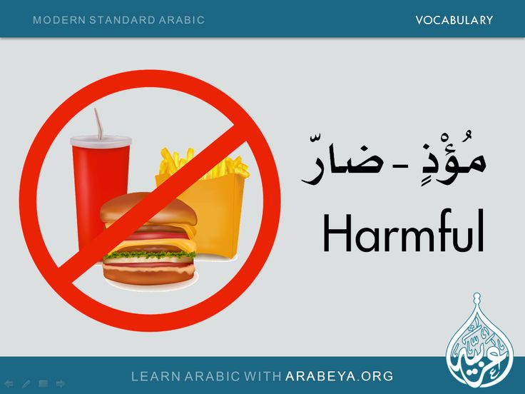 Learn about the Modern Standard Arabic language ...