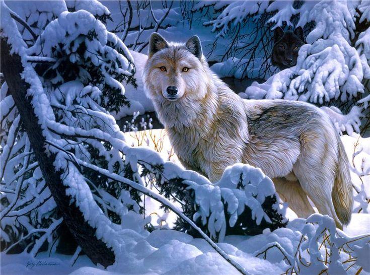 Одинокий волк - Художественная галерея