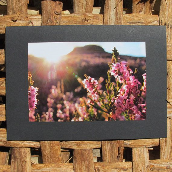 Photo greetings card. Heather 2. Large greeting card. by Saraphir