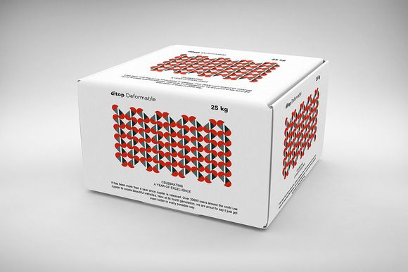 3D Box / Package Mock-Up 5 by alexvisual on @creativemarket