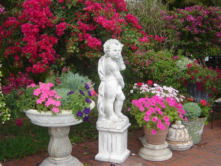 South Florida Garden