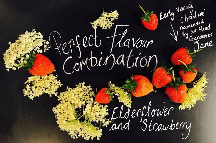 At FHI we make our very own elderflower syrup  #homegrown Kent venue  Kent wedding venue  Weddings South East near London