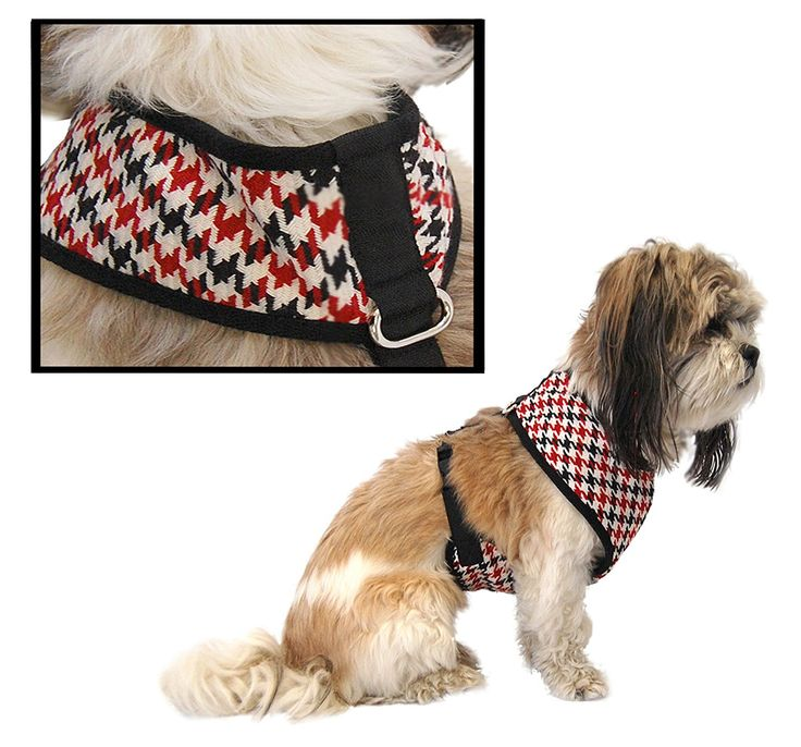 Anima Houndstooth Harness * For more information, visit image link. (This  is an