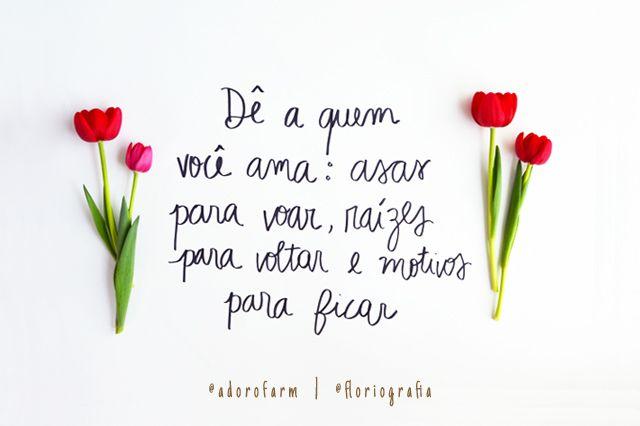 adoro FARM - floriografia: tulipa