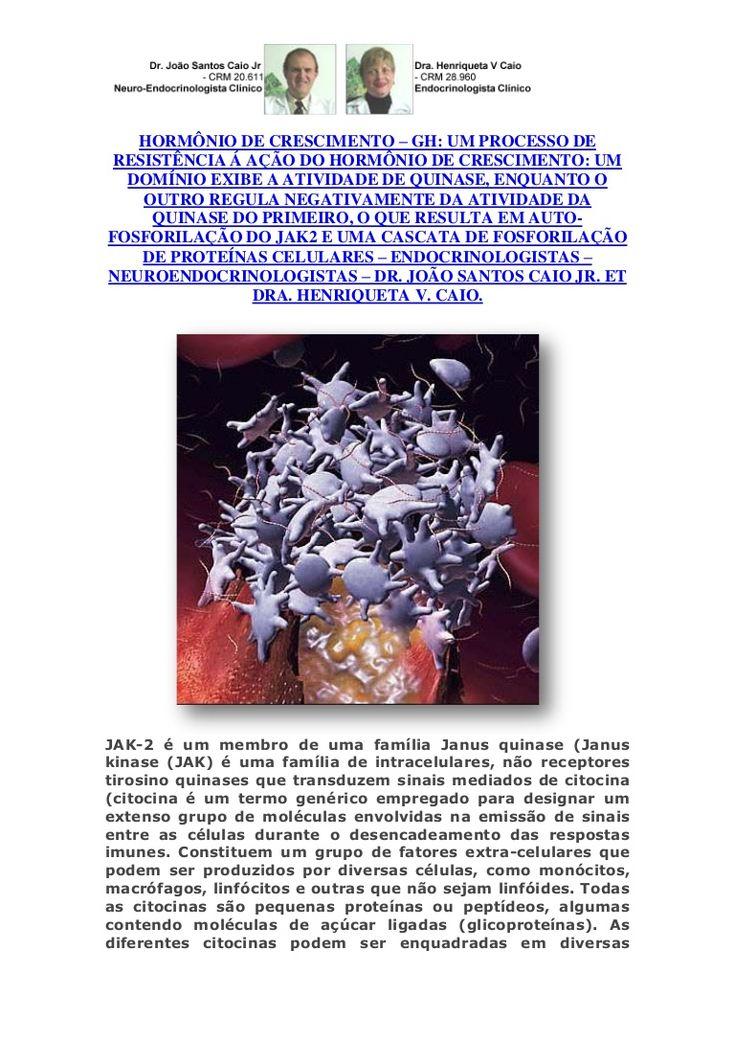 gh-citocinas-molculas-que-emitem-sinais-para-clulas-nas-respostas-imunes by VAN DER HAAGEN via Slideshare