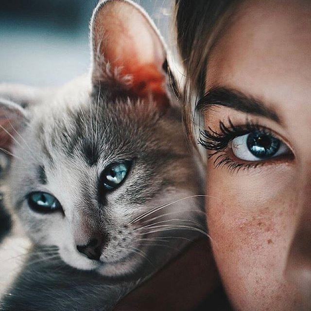 "12.7k Likes, 68 Comments - Top Portrait Photography (@myphotoshop_) on Instagram: ""❤️ Photo by @bluesummerbird #myphotoshop"""