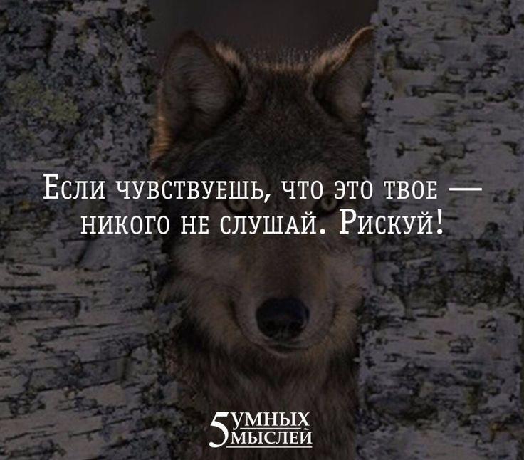 Умные мысли)