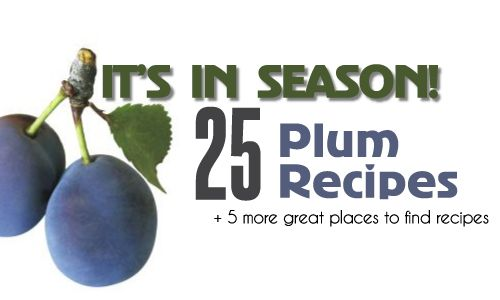 It's in Season: 25 plum recipes salads, soups, meals, baked goods, to sweets