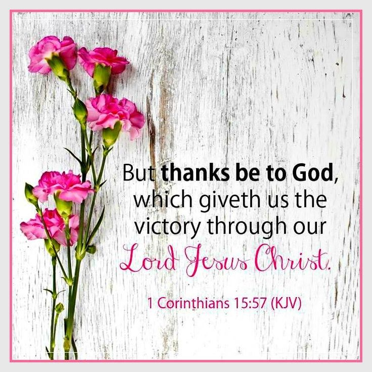 1 CORINTHIANS  15:57 -  But thanks be to God, which giveth us the ♥ VICTORY♥  through our Lord Jesus Christ!