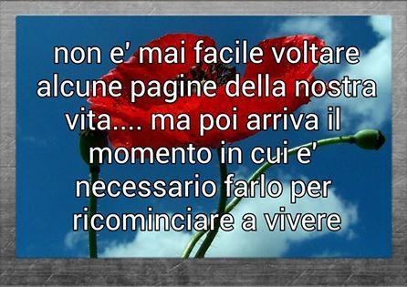 blog ufficiale i sogni son desideri facebook: FOTO DI: I SOGNI SON DESIDERI #FACEBOOK