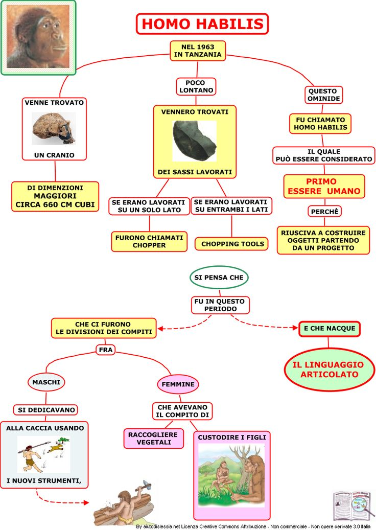 Preistoria 1 Istituto Superiore   AiutoDislessia.net