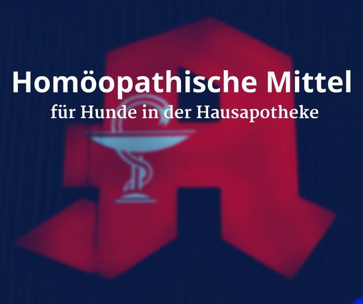 Homöopathische Mittel für #Hunde in der Hausapotheke #Homöopathie