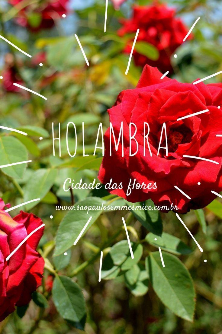 Holambra a cidade das flores é famosa pela Expoflora mas não se engane ela oferece atrações para serem visitadas o ano todo, como visitar  o moinho dos povos unidos, aproveitar a gastronomia, parques, lagos e visitar os campos de flores. A cidade está a poucas horas de São Paulo, sendo uma ótima opção para uma viagem de final de semana ou até um bate e volta saindo da capital de São Paulo, programe uma viagem  e conheça um pedaço da Holanda no Brasil.| Viaje Holambra- São Paulo