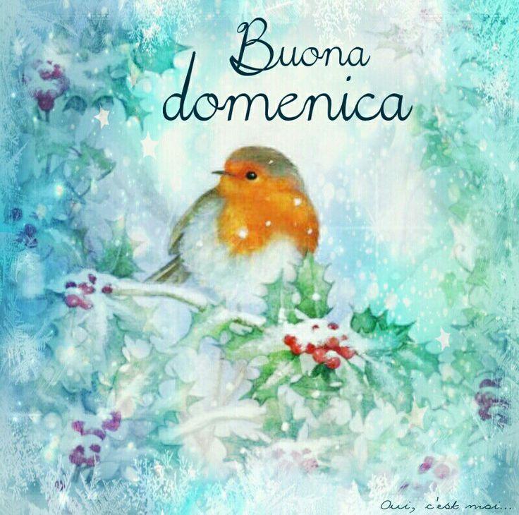 Buona domenica #domenica #natale ♡ Graziella ~ Oui, c'est moi...