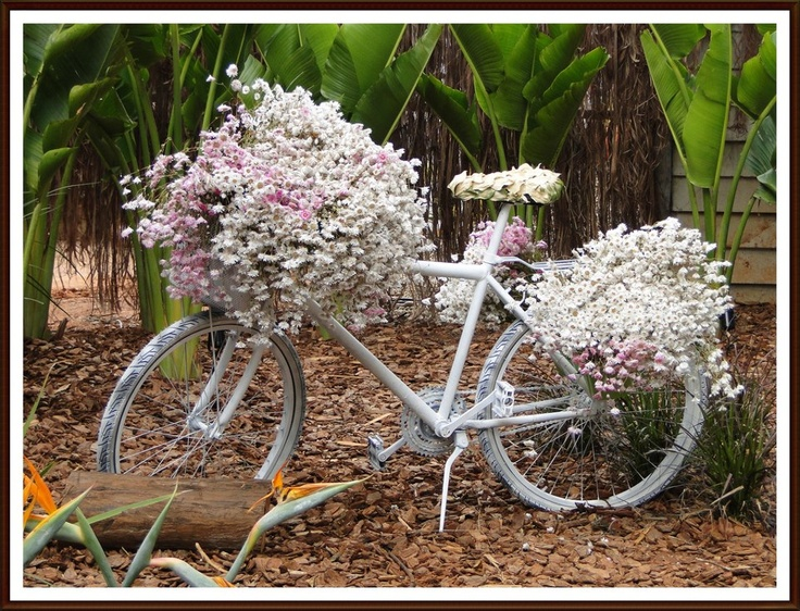 Bicycle Planter. See More. White On White