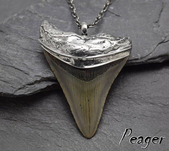 Megalodon PendantShark tooth fossilsWitch