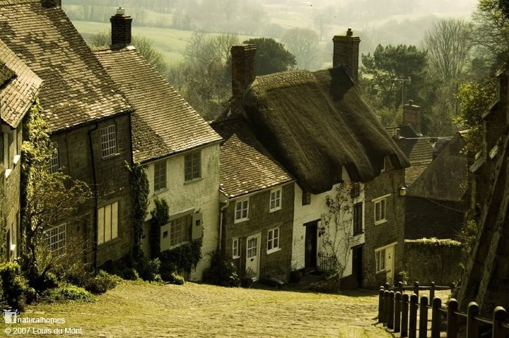 Gold Hill in Shaftesbury, England. From Natural HomesStones Cottages, England, King Alfred, Nature Buildings, Marketing Town, Old Town, House, Gold Hills, Nature Home