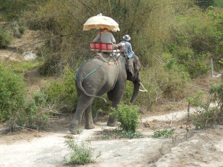 Elephant riding at the Hutsadin Elephant Sanctuary in Hua Hin, Thailand
