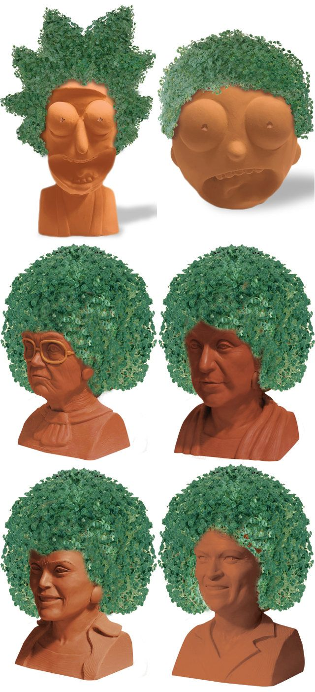 Rick And Morty Golden Girls Chia Pets Coming Soon Dr Wong Emporium Of Tings Web Magazine Chia Pet Golden Girls Pets