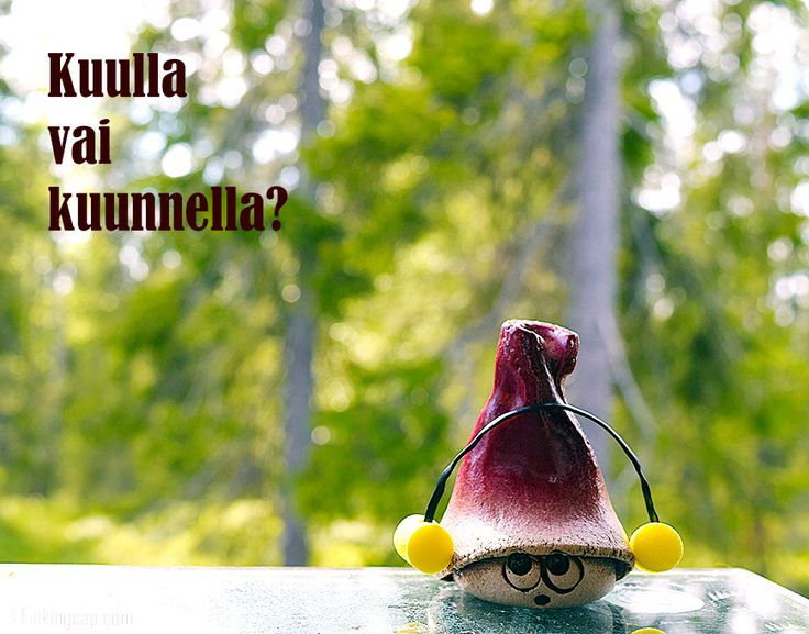 Kuulla vai kuunnella? These two Finnish verbs are very similar to the English pair 'hear' and 'listen'. Find out more at www.finkingcap.com!