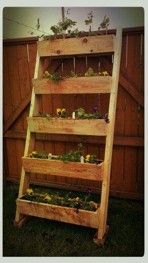 Bacs à fines herbes et fleurs.