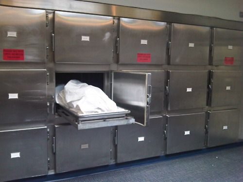 65 best forensicpathologist images on Pinterest Forensic - morgue assistant sample resume