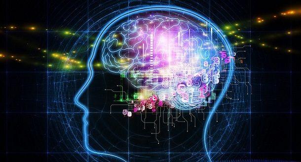 Reduzir drasticamente o consumo de calorias, tanto quanto 40%, pode retardar o envelhecimento das células e pode mesmo prolongar o tempo de vida, têm sugerido estudos científicos. Agora, os pesquisadores dizem ter encontrado uma maneira de imitar os efeitos benéficos da restrição calórica sobre o cérebro com um fármaco.