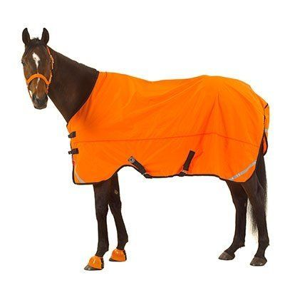 """Don't Shoot Sheet 72"""" Orange by Centaur. $59.35. Bright Blaze Orange color and reflective strips increase visibility. 420D nylon waterproof-breathable sheet also features double buckle front closure, cut-out front leg arches, criss-cross surcingles, and d-rings fro optional leg straps (sold seperately).. Bright Blaze Orange color and reflective strips increase visibility. 420D nylon waterproof-breathable sheet also features double buckle front closure, cut-out front leg arches, ..."""
