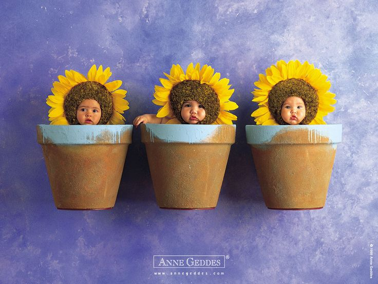 Anne Geddes Wallpaper | Anne_Geddes_Wallpaper_099.jpg