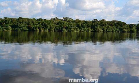 Un día en el Orinoco. #Viajes Descubre la Colombia profunda con Mambe.org!