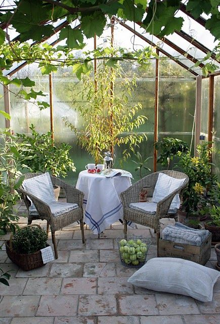 The conservatory or simply a day in the greenhouse!